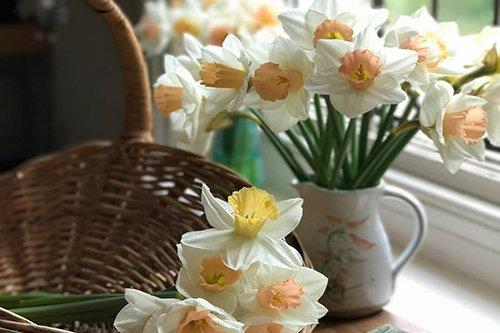 Весна — это солнце, цветы и предвкушение радости.